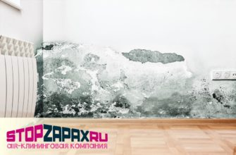 Устранение плесени и запаха сырости в помещениях и авто в СПБ_stopzapax.ru